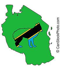 Jackal from Tanzania