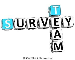 3D Team Survey Crossword
