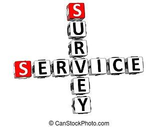 3D Survey Service Crossword