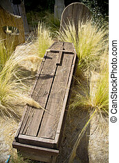 cementery with wooden coffin sticking out of the ground