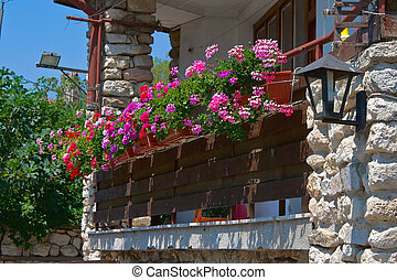 Flowers on the balcony. Bulgaria. Nessebar. - Flowers on the...