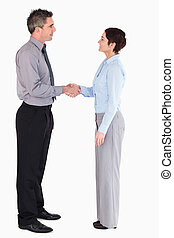 Managers shaking hands against a white background