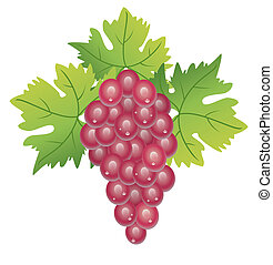 grape cluster - vector grape cluster and green leaves