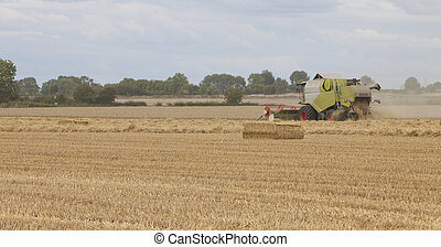 combine harvester working the field