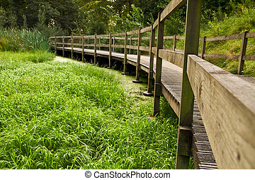 Wooden bridge path in the park