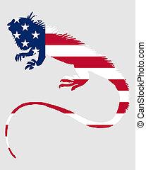 Iguana United States of America