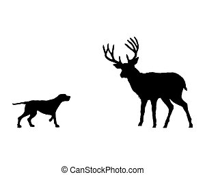 Two animals, setter and deer meet face to face