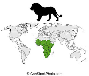 Lion distribution