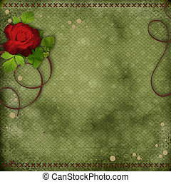 beautiful background with red rose