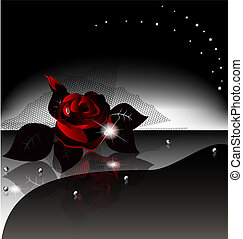 background black rose - on an black background is a large...