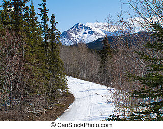 Well used winter trail in Yukon mountains, Canada - Ski-doo...