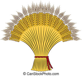 sheaf of wheat - Vector sheaf of wheat on a white background