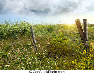 Old country fence on the prairies in Saskatchewan