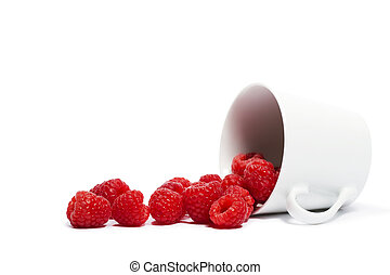 raspberries rolling from a fell over cup on white background