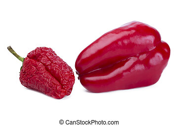 Fading and fresh red bell pepper in comparison, is isolated...