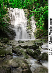 Waterfall in jungle with lush green trees around