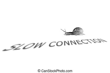 Slow connection - Crawling snail used to represent slow...