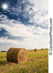 Haystacks and wonderful clouds. - Field with bales against...