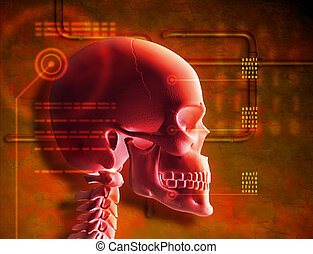 Red Skull - Composition of a red skull and a grunge style...