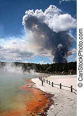 Forest fire in the Wai-o-Tapu geothermal area