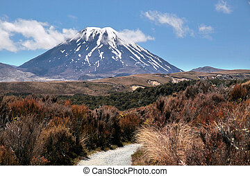 Mount Ngauruhoe in Tongariro National Park,...