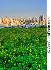 New York City Manhattan with lawn - New York City Manhattan...
