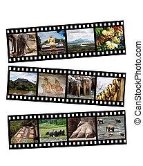 Sri Lanka collage - Images of Sri Lanka displayed on black...
