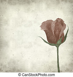 textured old paper background with collaged red rose -...