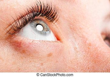 female eye - closeup view of a beautiful female eye