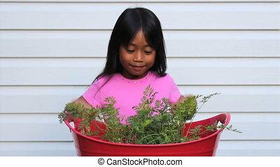 Happy Little Carrot Picker