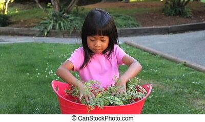 Asian Girl Discovers A Carrot - A cute little Asian girl...
