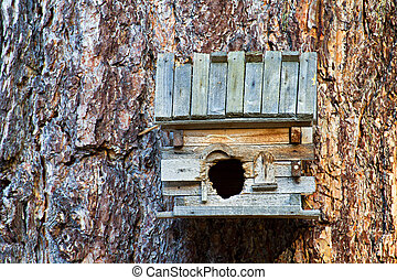 Birdhouse - Small wooden bird house with a tree trunk...