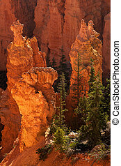Bryce Canyon National Park Sunrise On Hoodoos