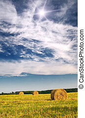 Field with bales against tender sun in the blue sky - Three...