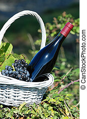 bottle of red wine - Bottle of red wine and grapes in basket...