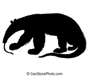 Anteater Silhouette