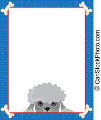 Poodle Frame - A frame or border featuring the face of a...