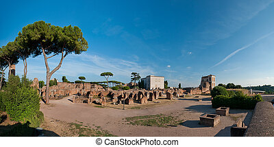 Palatine Hill - Panoramic view at the Palatine Hill ruins in...