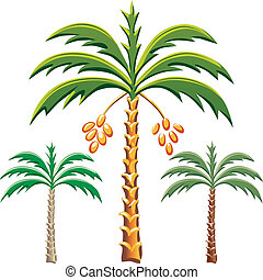 vector three date palm trees - set of the date palm trees,...