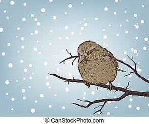 winter background with sparrow on branch