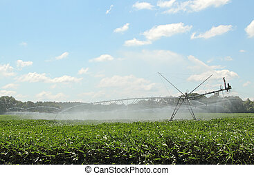 Crop Irrigation - Irrigating a farm field of soy beans