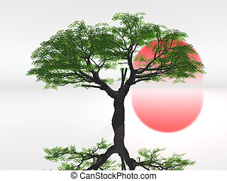 Tree with red sun in background