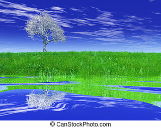Tree on the shore with a reflection
