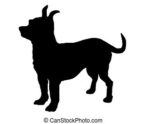 The black silhouette of a shorthaired Chihuahua