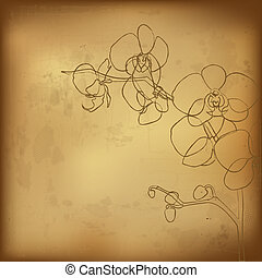 Orchid And Old Paper, Vector Illustration