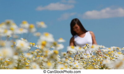 Brushing flowers - Young girl walking n the meadow and...