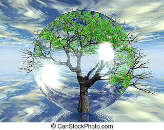 Tree in a bubble with sky background