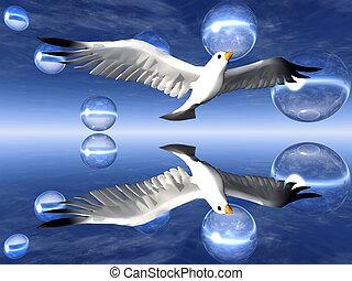 pombo, voando