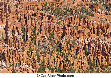 Hoodoos - Bryce Canyon Hoodoos as viewed from Natural Bridge...