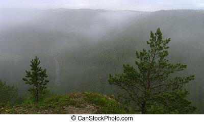 timelapse morning fog